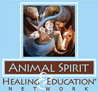 Animal Spirit Healing and Education Network